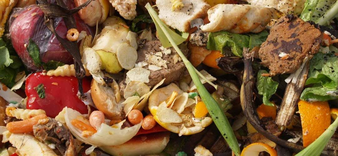 Reduce your waste: Home composting